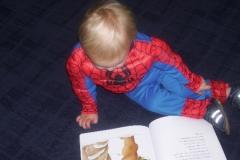 mason-reading