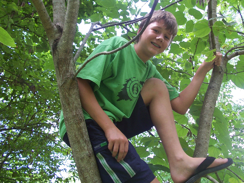boy-in-tree